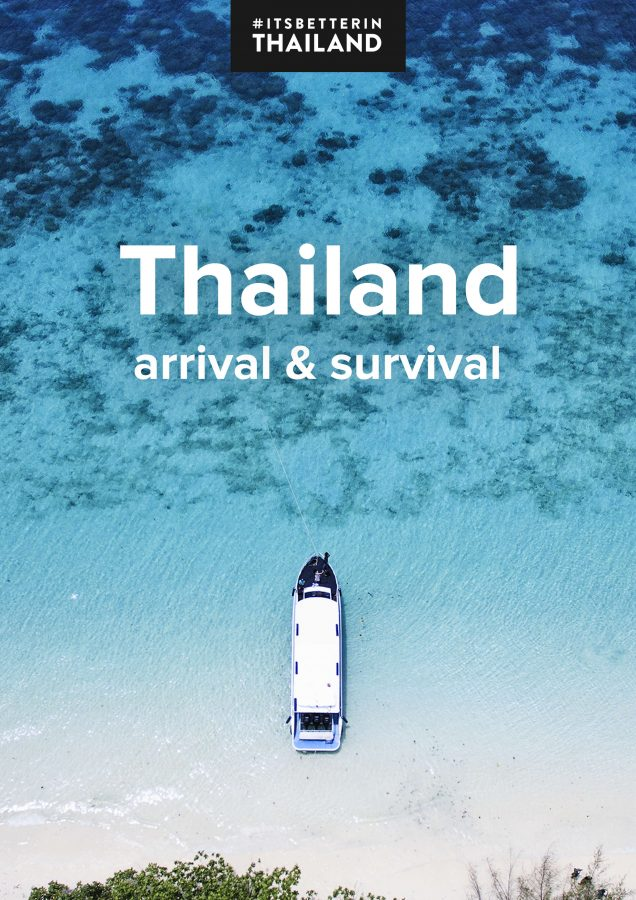 Thailand Arrival & Survival ebook