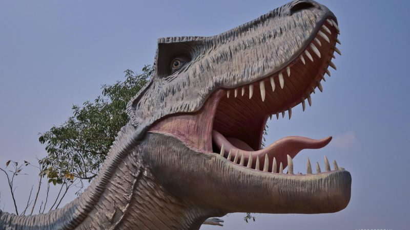 Kalasin Dinosaur Park